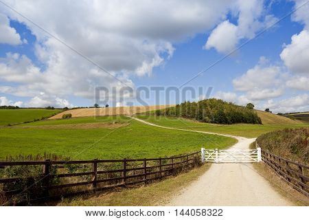 White Gate With Bridleway