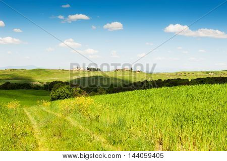 Green Fields And Blue Sky.