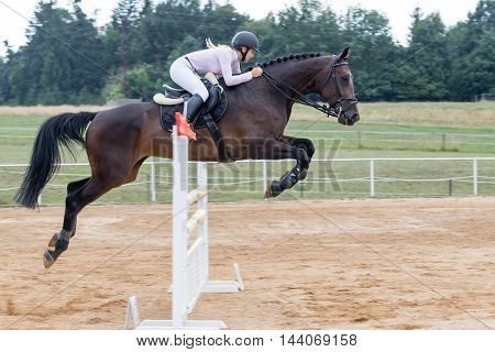 SVEBOHOV CZECH REPUBLIC - AUG 20: Young longhaired blond horsewoman jumping a dark horse at