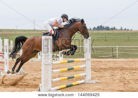 SVEBOHOV CZECH REPUBLIC - AUG 20: Horseman jumping on a brown horse at