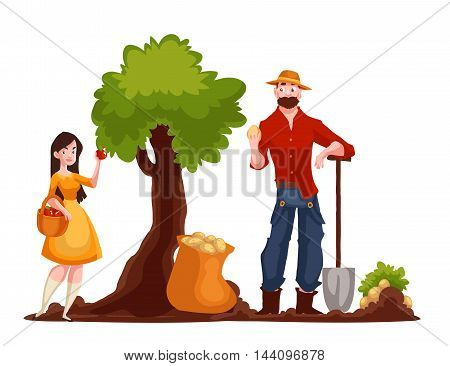 Man harvesting potato and woman picking apples, cartoon style vector illustration isolated on white background. Potato and apple harvesting in the fall time, countryside gardening concept