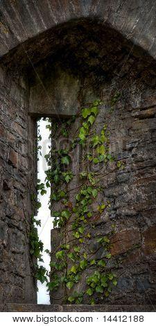 Arrow Slit In Castle Wall