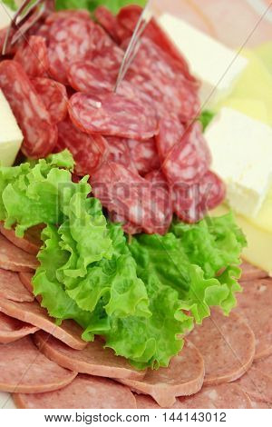 Sausage slices with green lettuce leaf and cheese