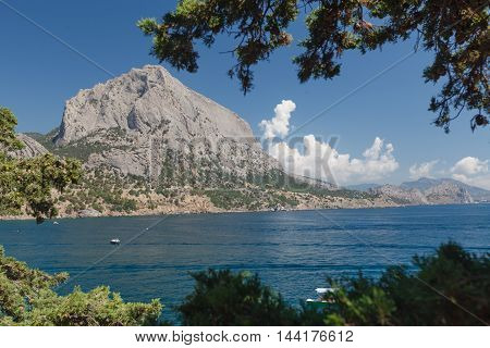 Secluded beach with turquoise sea water and tree