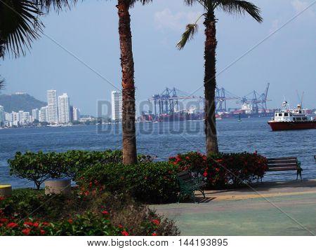 puerto, palmeras, mar, barco, paisaje, edificios, ciudad