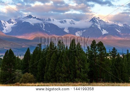 The picturesque landscape with mountains covered with snow clouds and larch forests in pink and turquoise light of the sun at sunrise