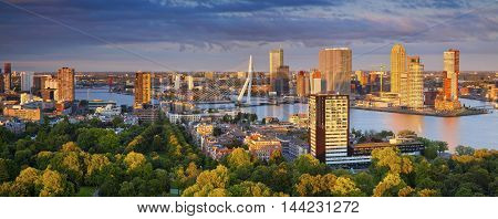Rotterdam Panorama. Panoramic image of Rotterdam, Netherlands during summer sunset.