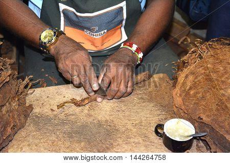Cigar Roller Cutting
