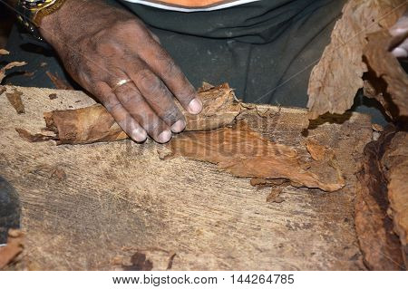 Cigar Roller Closeup