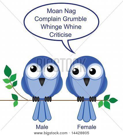Bird sexes