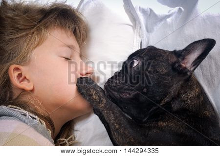 Funny girl and the dog. Bulldog owner wakes up stroking face big paw. Concept - Good morning happy awakening of love and affection