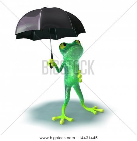 Frog afraid of rain