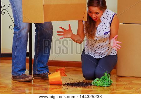 Man carrying cardboard box that has broken bottom, woman sitting hysterically upset, smashed plant on floor, moving in concept.
