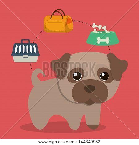 dog bone food bag basket cartoon pet animal con. Colorful and flat design. Vector illustration