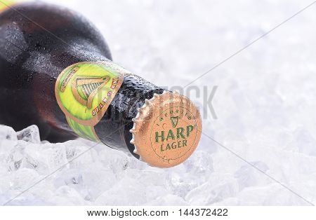 Harp Lager On Ice