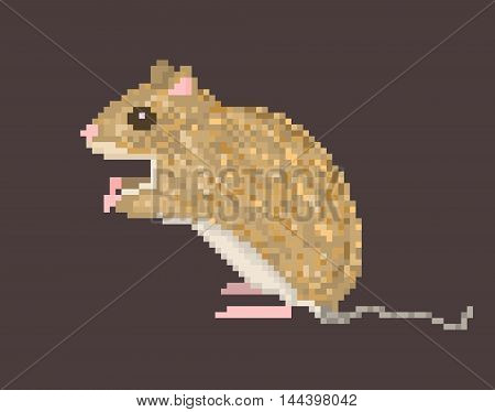 Vector pixel art illustration of brown field mouse isolated on dark brown background. Side view sitting meadow vole icon.