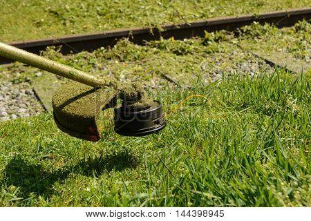 Grass mowing with brush cutter - Closeup Gardening