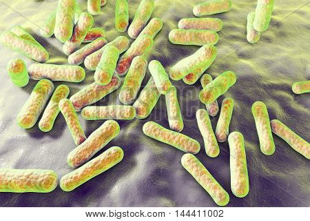 Propionibacterium acnes, 3D illustration. Bacteria which are found in the hair follicles and pores of the skin as part of normal flora but can also cause acne in case of an over-production of sebum poster