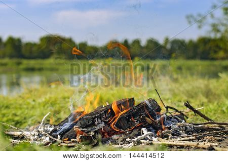 Bonfire in nature. Burning wood with smoke. Close-up
