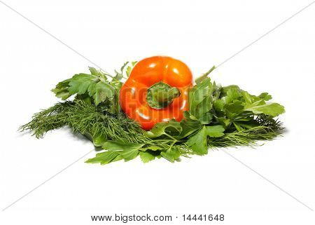 Pepper, parsley and fennel isolated on white