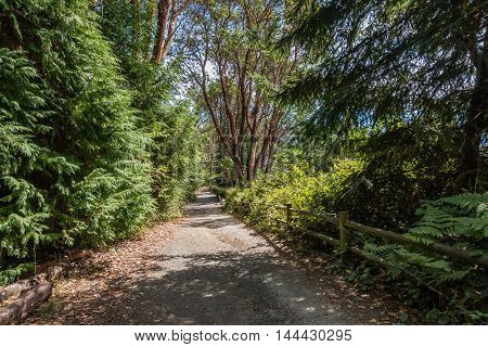 A view of a path and fence at Lincoln Park in West Seattle Washington.
