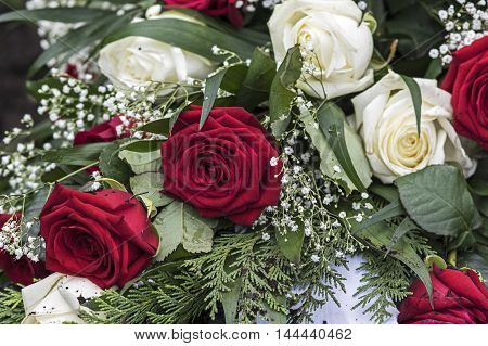 A Bouquet of White and red roses