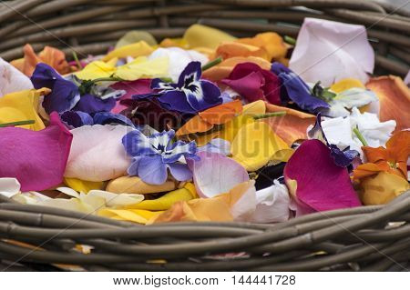 A brown Basket with colored flower petals