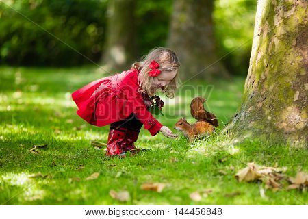 Girl feeding squirrel in autumn park. Little girl in red trench coat and rain boots watching wild animal in fall forest with golden oak and maple leaves. Children play outdoors. Kids playing with pets