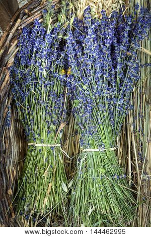 Lavender flowers in a lavender Store in Provence France