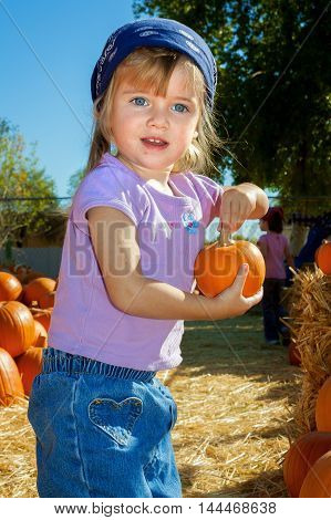 A small girl holds a tiny pumpkin while standing in a pumpkin patch. She has a blue bandana on her head.