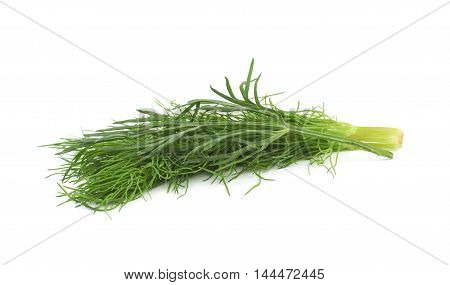 Pile of multiple dill herb branches isolated over the white background