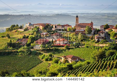 Treiso (Le Langhe) scenic view and landscape