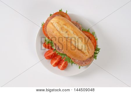 fresh sandwich with salami on white plate