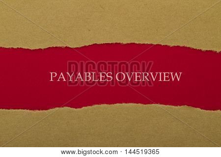 PAYABLES OVERVIEW word written under torn paper .