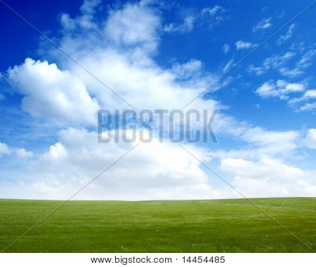 Picture of green field and blue sky