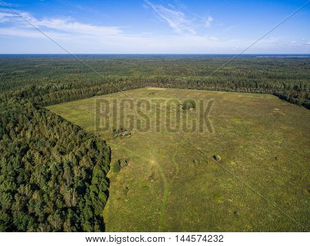 Aerial view of green field with forest and Chudskoe lake in Pskov region Russia, at summer time