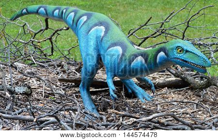 A velociraptor dinosaur out during the summer