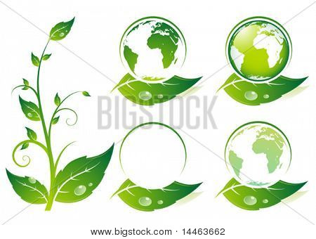 Earth on a leaf