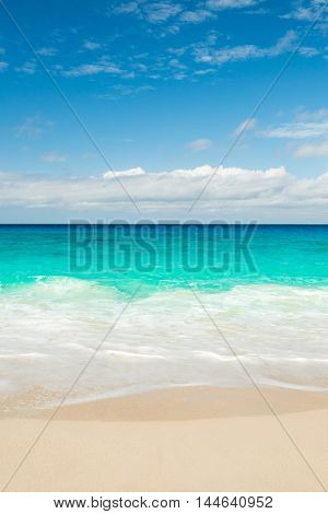 tropical beach with turquoise water