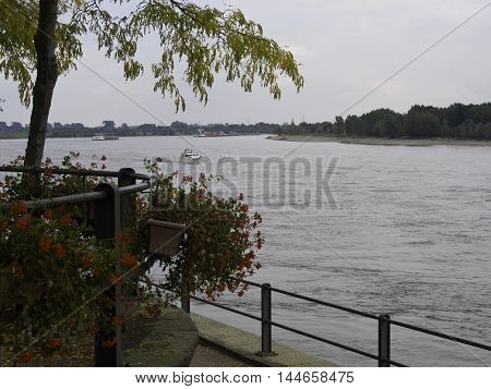the river rhine near rees in germany