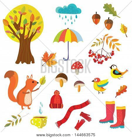 Autumn collection illustration with nature elements and animals - decorative style vector design