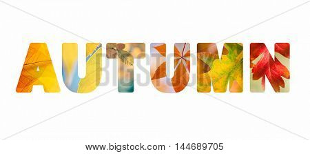 Word Autumn with colorful nature leaves photos inside the letters, isolated on white