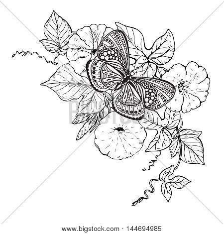 Vector illustration of hand drawn graphic butterfly on bindweed flower branch. Black and white image for for coloring book, tattoo, print on t-shirt, bag, invitations and greeting cards.