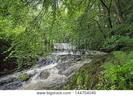 The Stock Ghyll Force waterfalls in Ambleside, Lake District National Park, Cumbria England.  Ambleside is a popular tourist attraction at the head of Lake Windermere with the falls a short walk from the town centre.