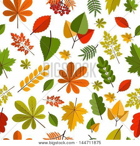 Red and orange autumn leaves background. Colorful autumn leaves background back to school forest bright seamless pattern. Seasonal texture colorful fall autumn leaves nature pattern vector.