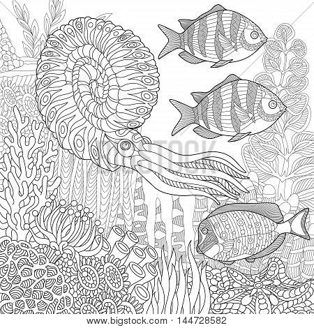 Stylized composition of tropical fish calamari (squid) underwater seaweed corals and starfish. Freehand sketch for adult anti stress coloring book page with doodle and zentangle elements.