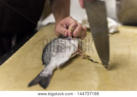 A sushi chef cuts cleanly through a fish.