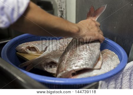 Sushi chef washes fish before filleting for service.