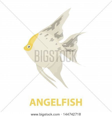 Angelfish common fish icon cartoon. Singe aquarium fish icon from the sea, ocean life cartoon.