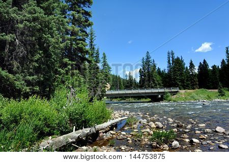 Highway and bridge crosses the Gallatin River in Montana. Large piece of driftwood lays along river's shoreline.